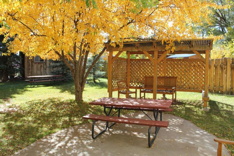 patio fall 2011